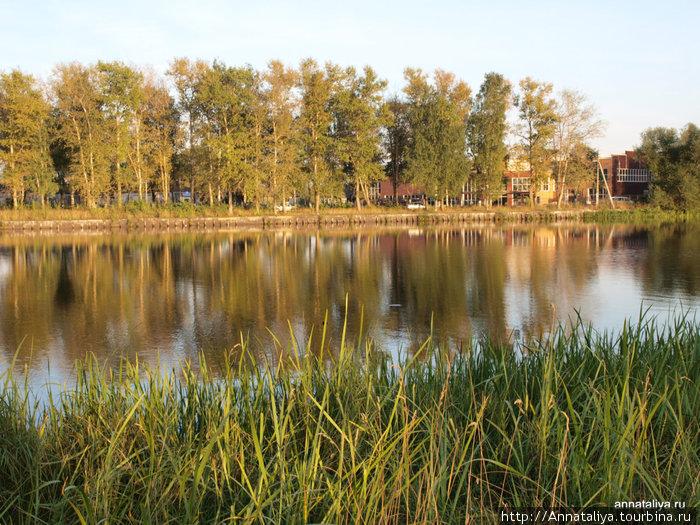 Вид на Цну из парка Текстильщиков