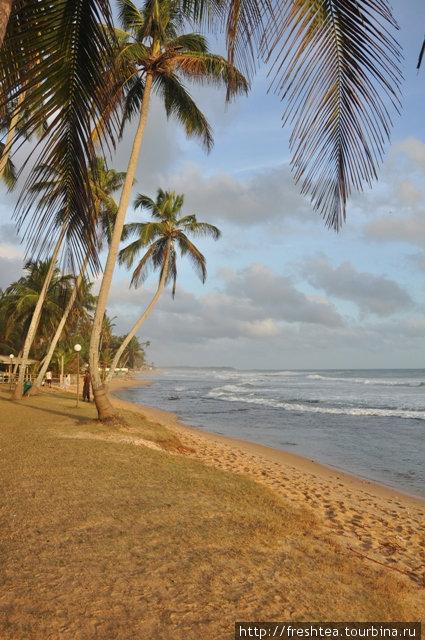 В закатном свете узкая полоска пляжа у Amaya Reef становится волшебно-красивой.