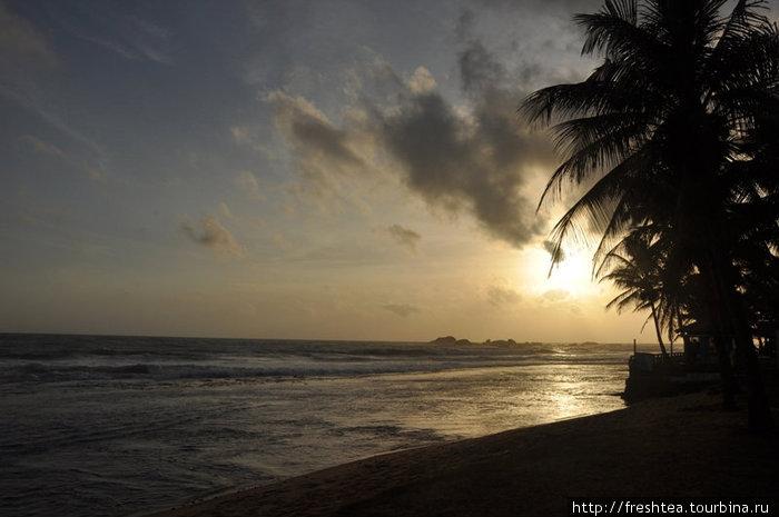 Закаты в Хиккадуве — мистические. Ловить в объектив фотокамер такие картины на берег собирается добрая половина гостей отеля.