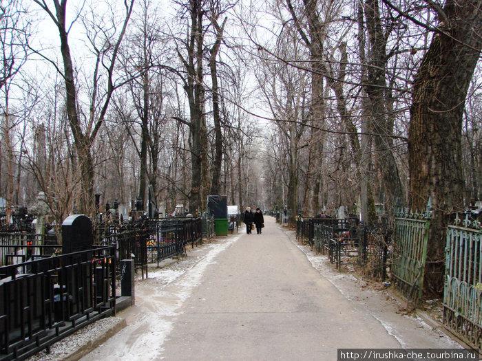 Аллеи кладбища