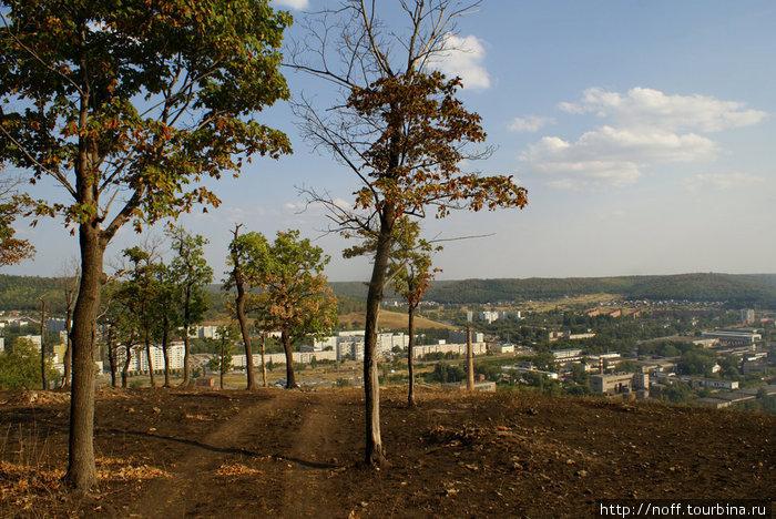 Жигулёвск внизу. Гора и деревья обгоревшие.