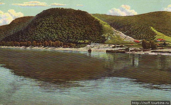 Моркваши. 1910 год.