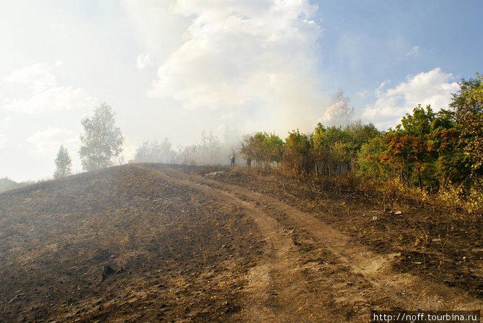 В этом году окрестности леса в Жигулёвске пострадали весьма сильно от пожаров. Подробнее можно почитать здесь: http://do-manus.livejournal.com/5440.html http://do-manus.livejournal.com/6248.html
