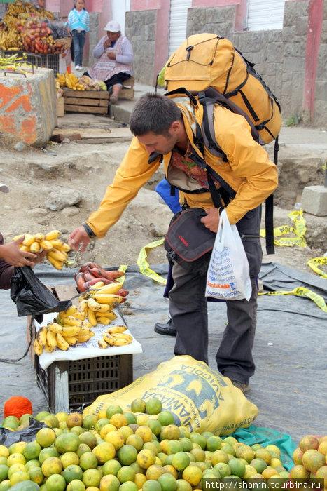 В Эквадоре много бананов