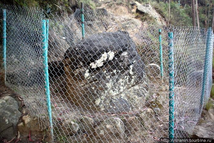 Камень за решетекой