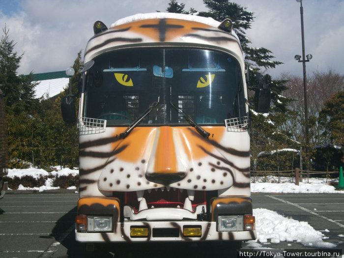 Автобус для перемещения по сафари-парку, с решетками на окнах для безопастпости