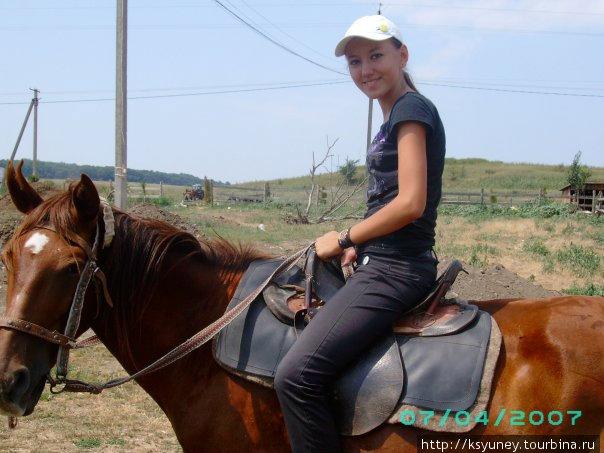 Мои обожаемые лошади
