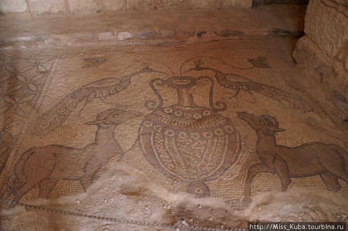 Мозаичные полы в жилищах Мадабы