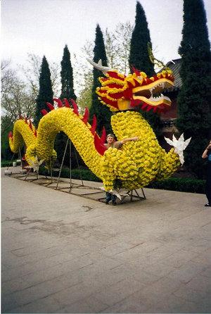 Дракон, сделанный из живых цветов при входе в усадьбу Пу Сонли.
