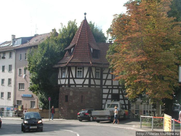 Башня прячется за листвой