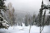 После снегопада. На моём пути ни одного лыжного следа :)