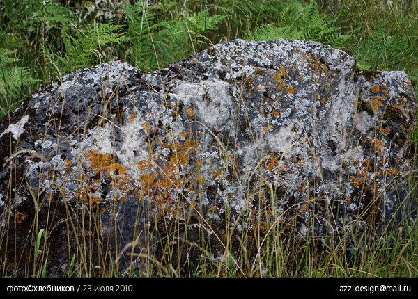 лишайники на камнях / река ай