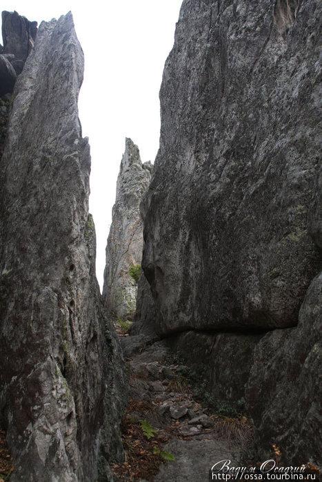 Хребет Таганай (Южный Урал). Вершина горы Двуглавой. Фото Вадима Осадчего.