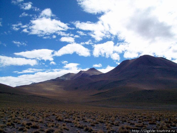 Пустыня Атакама Сан-Педро-де-Атакама, Чили