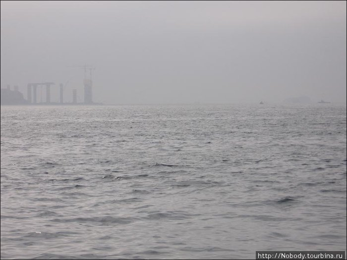 Плывём в тумане...
