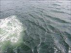 Интересно ведёт себя вода, когда паром плывёт...