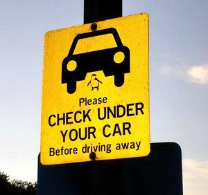 вот такой любопытный знак висит на парковке автомобилей