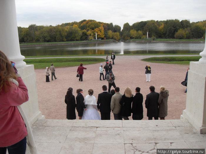 А вот и свадьба