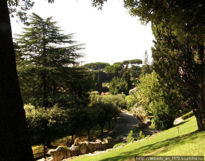Сад расположен террасами