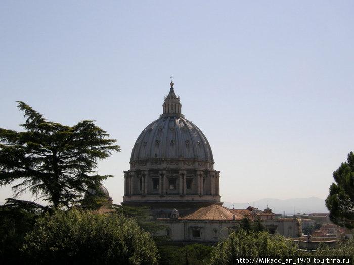 Купол собора без садовой арки