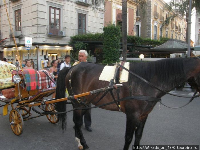 Конная повозка — как транспорт для туристов