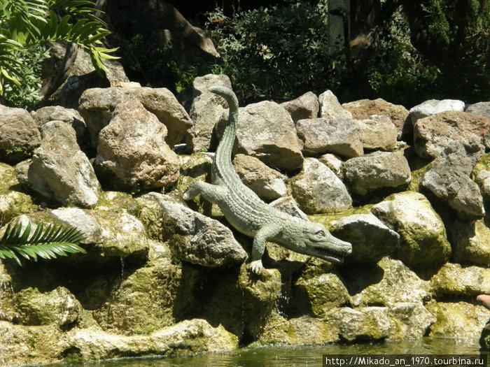Крокодил не настоящий