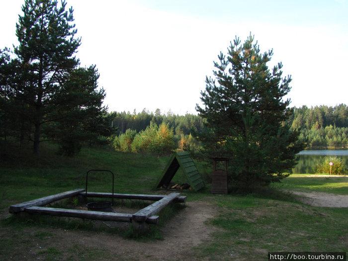 Площадка для пикника. заботливый егерь всегда оставит поленьев для костра.