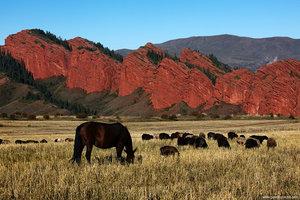Скалы «Семь быков» в ущелье Джеты-Огуз.