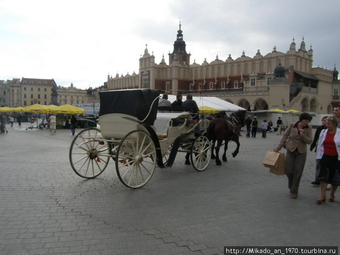На центральной площади Кракова