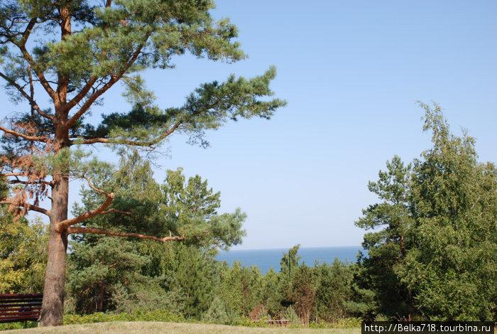 Вид на Балтийское море