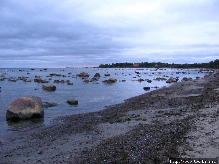 берег Виймси сплошь усеян валунами — подарками ушедшего ледника