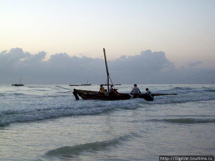 Океан ждет любителей рыбалки...