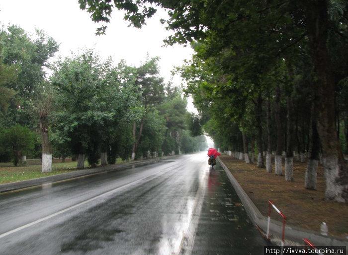 Мокрый Пионерский проспект