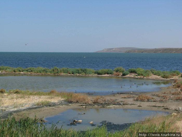Коса Тузла (в сторону Таманского залива)