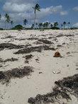 пляж после океанского прилива