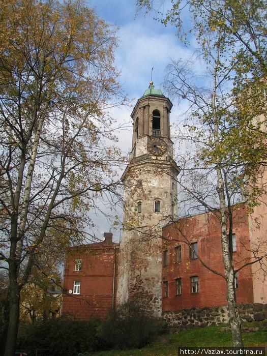 Часовая башня стиснута соседними домами
