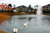Озеро в комьюнити, где жила моя сестра.