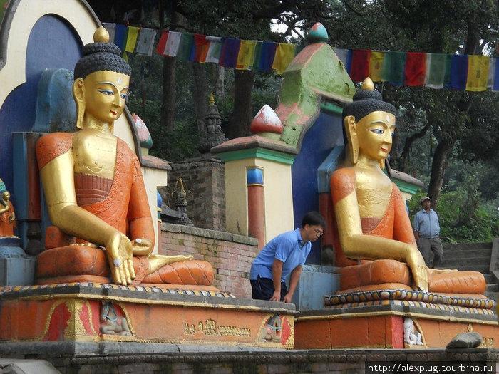Утренняя разминка с Буддами