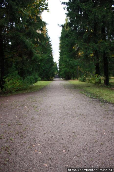 начало прогулки по парку