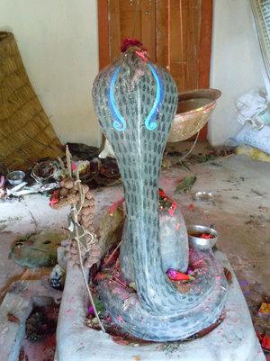 Священная кобра в храме