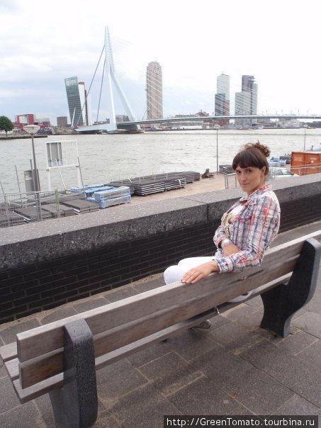 на фоне моста Эразма.