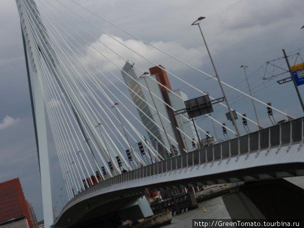 мост Эразма.