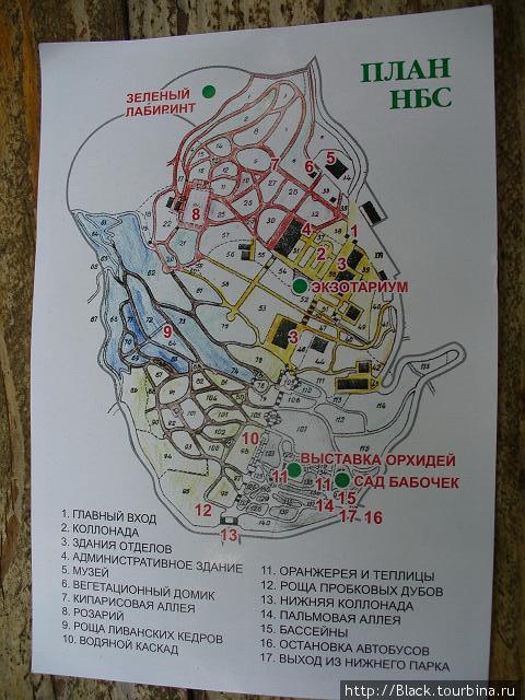 другая схема Никитского ботанического сада Никита, Украина.
