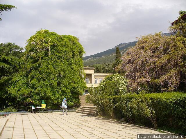 Комплекс зданий Никитского ботанического сада
