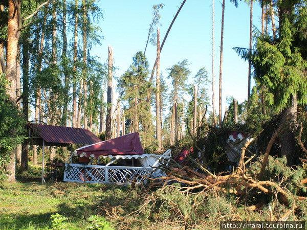 Последствия разрушительного урагана