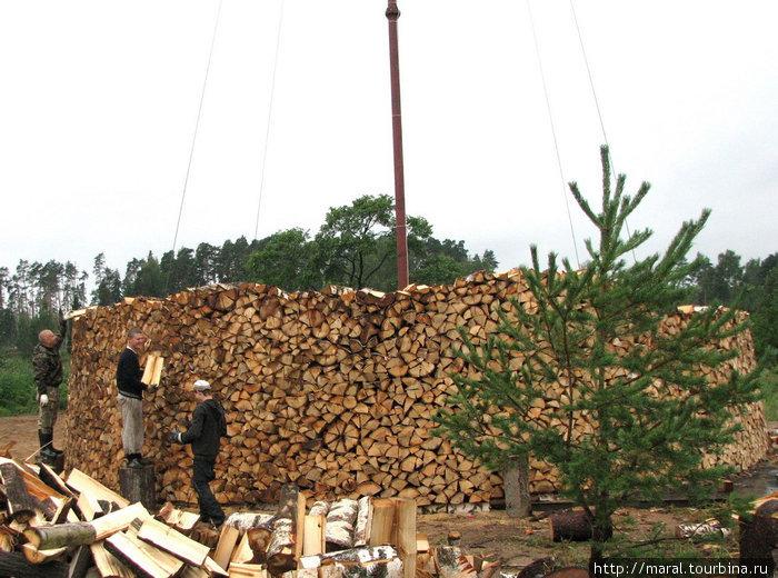 Поваленные деревья стали распиливать на дрова, и возникла идея сложить из берёзовых поленьев поленницу