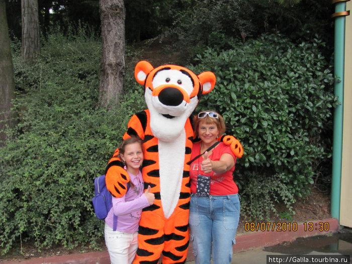 Шли,шли и встретились с тигрёнком.