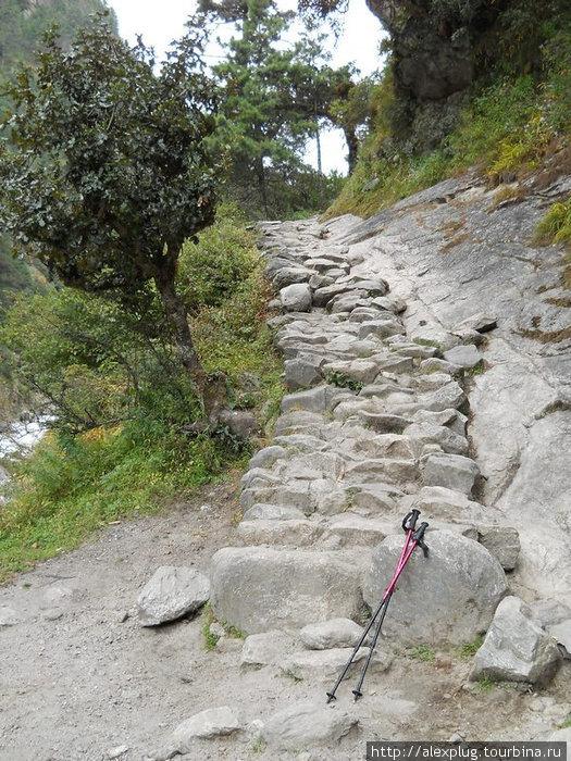 Начало большого пути к Намче. Каменные ступени.