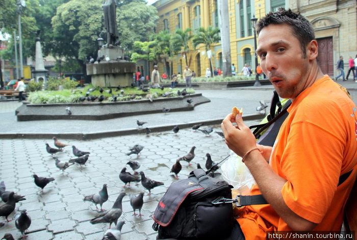 Олег Семичев взялся покормить голубей, заодно и сам позавтракал
