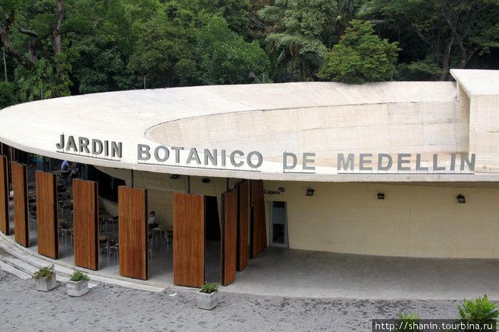 Ботанический сад — одна из достопримечательностей Медельина